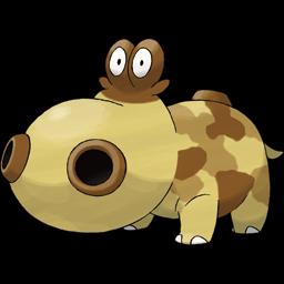 Hippopotas card