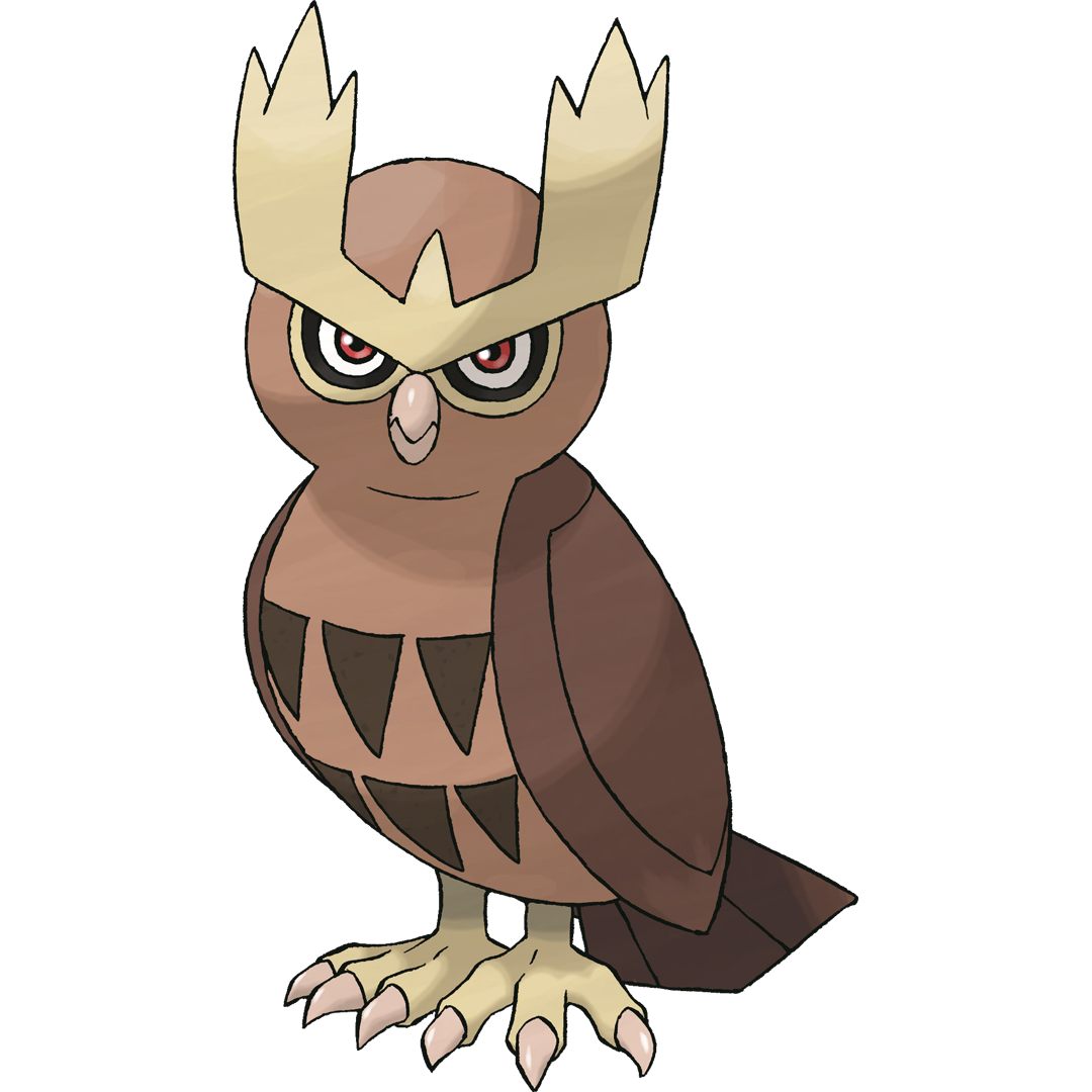 Noctowl card