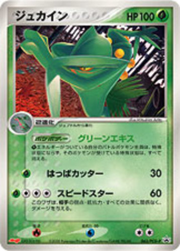 Sceptile card for EX Emerald